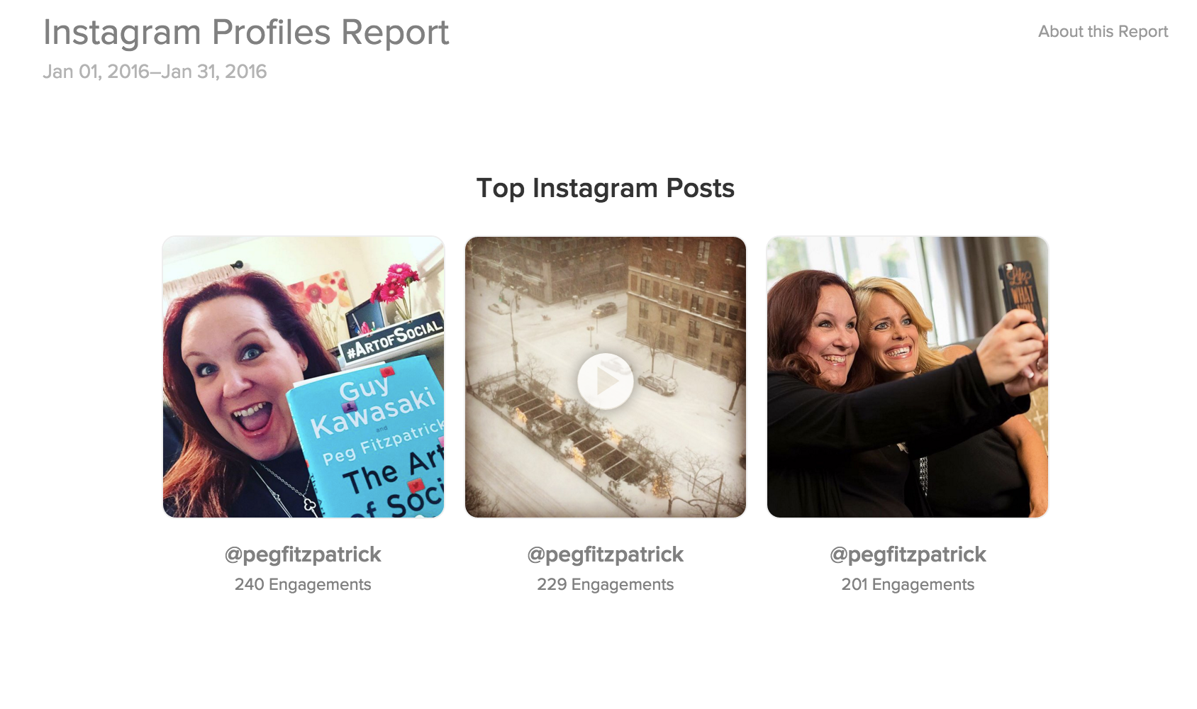 Instagram profile report on Sprout Social